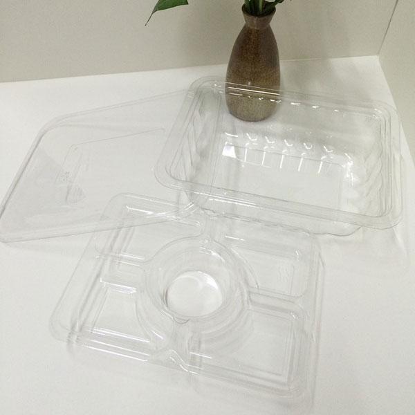 salad-tray5