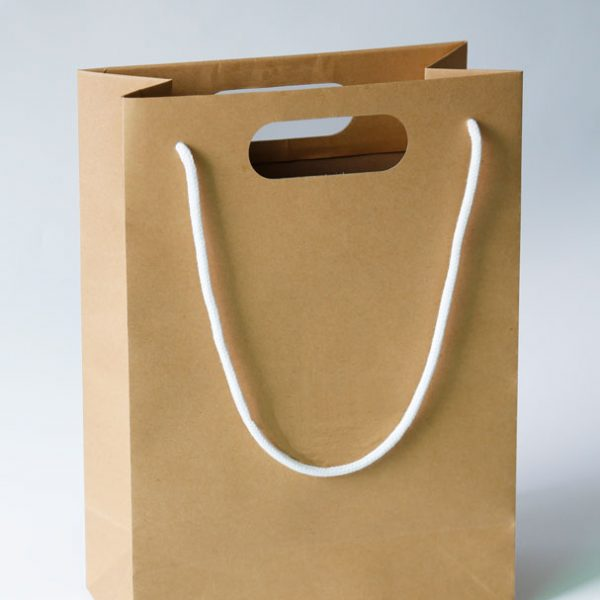 Backpack Paper Bag